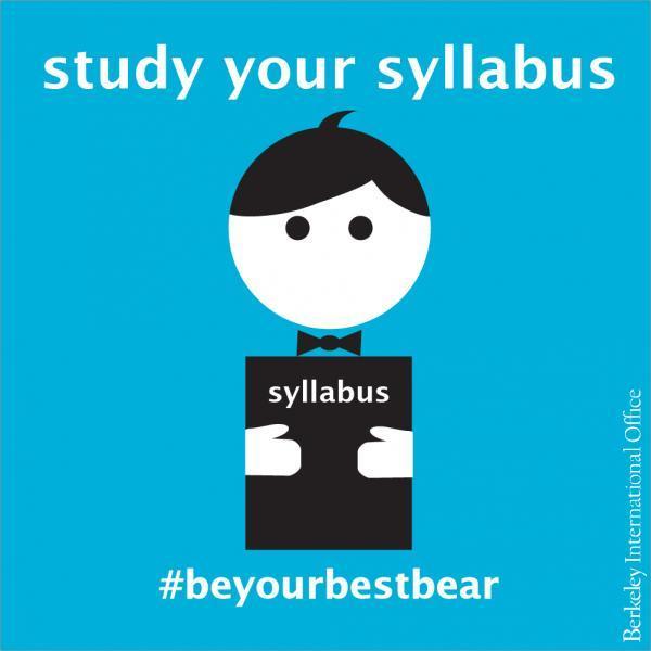 Study Your Syllabus